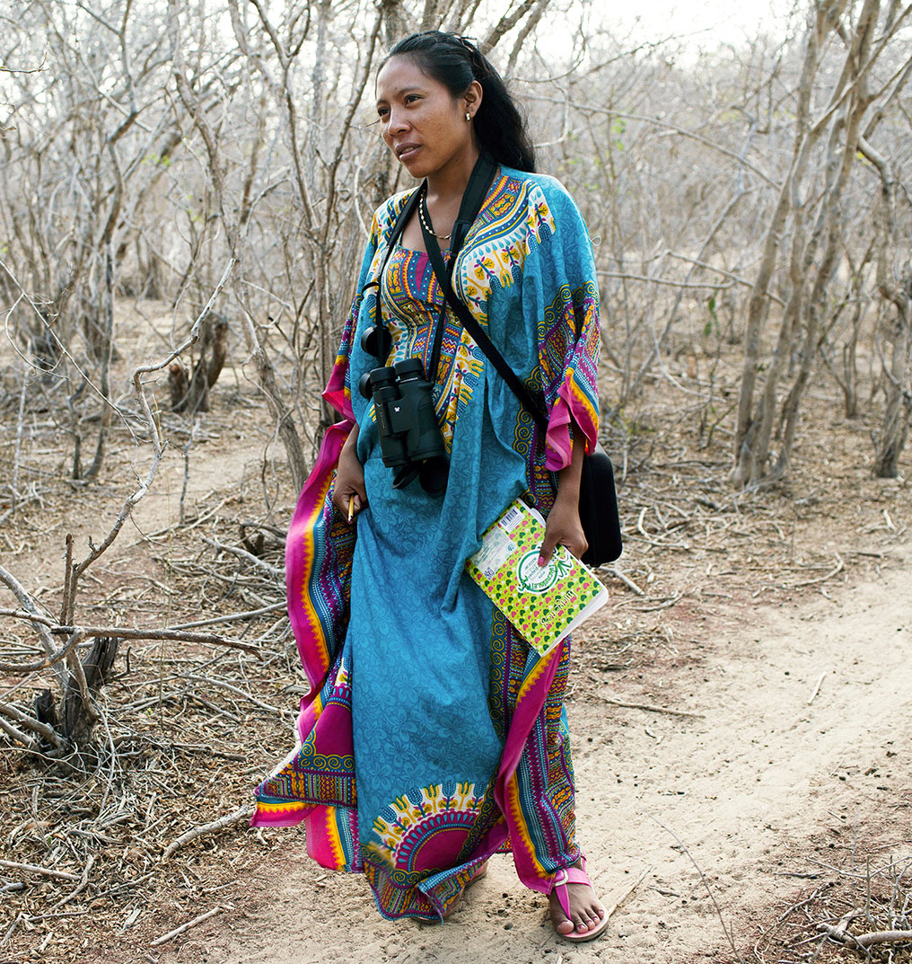 Yerlis Pushaina, a Wayuu guide-trainee, at a field training session in Los Flamencos, Colombia.  Photo: Carlos Villalon